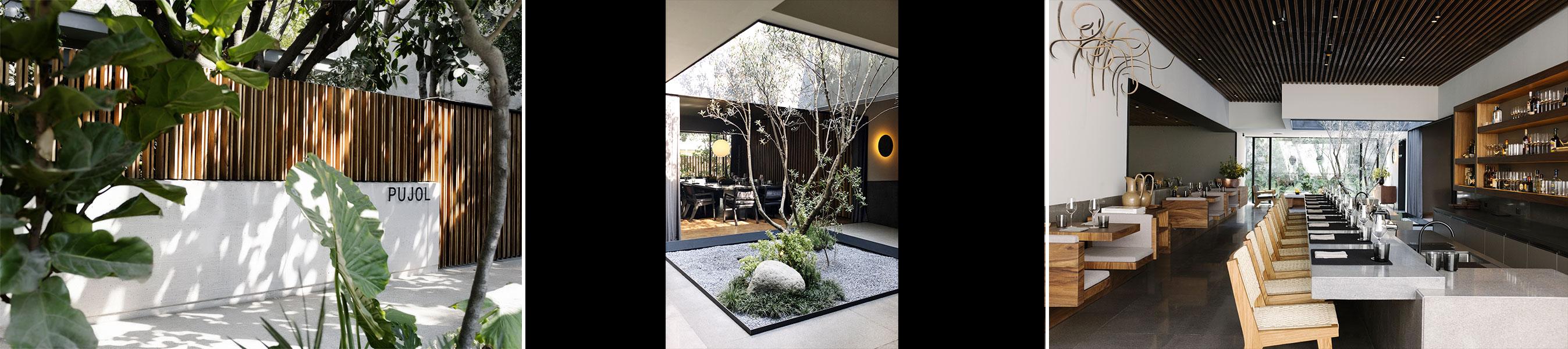 2017 – Restaurante Pujol Tennyson
